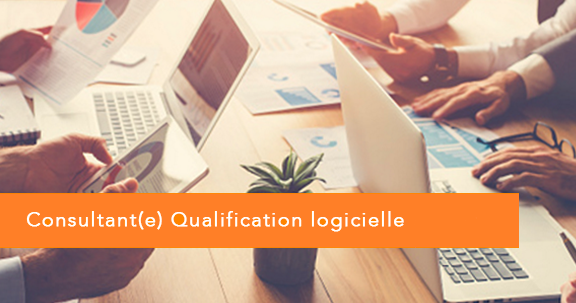 offre d u0026 39 emploi consultant qualification logicielle junior